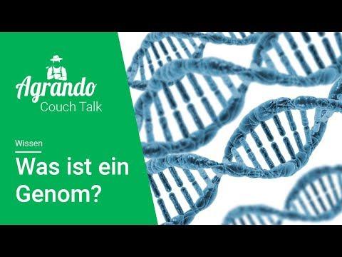 Was ist... ein Genom?