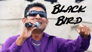 Black Bird (2016 Chutney Soca) - Omardath Maraj feat. Raymond Ramnarine