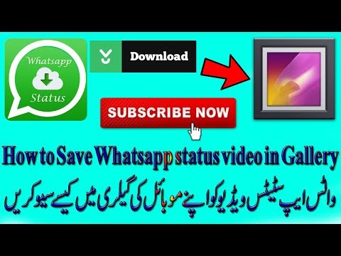 How To Save Whatsapp Status Video In Gallery Hindi/Urdu | Internet Tech Tips