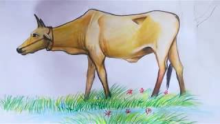 How to draw Cows eat grass in a wells