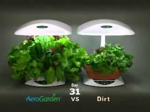 Aerogarden timelapse vs soil youtube for Soil vs hydro