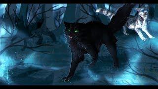 Остролистая - Девушка Боец - Коты Воители - Клип