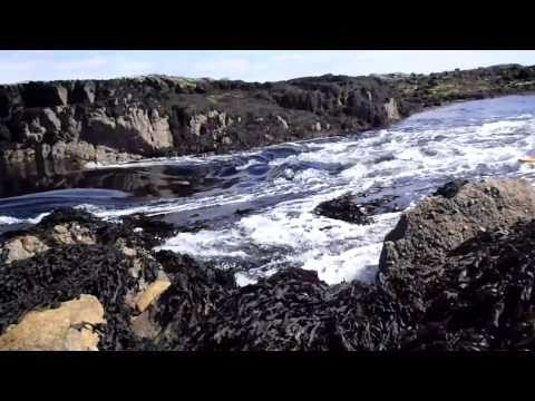 Carna - tidal falls both ways with the tide turning April 2011.mp4