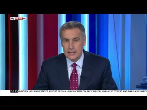 Ambassador Bermann interviewed on Sky News