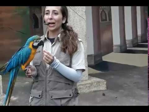 Essel World Bird Park with Family