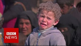 Surviving Mosul: Residents who've escaped the fighting - BBC News