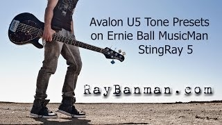 stingray bass guitar through avalon u5