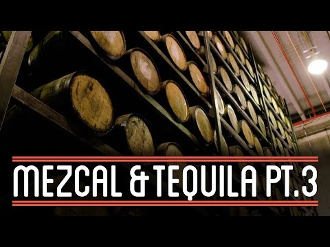 wine article Cinco de Mayo Tequila production Part 3