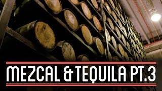 Fermenting & Distilling Tequila (3/3) | How to Brew Everything: Mezcal and Tequila