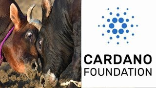 King Cardano Bullrun ADA Rally Could Be imminent In Light of Coinbase news