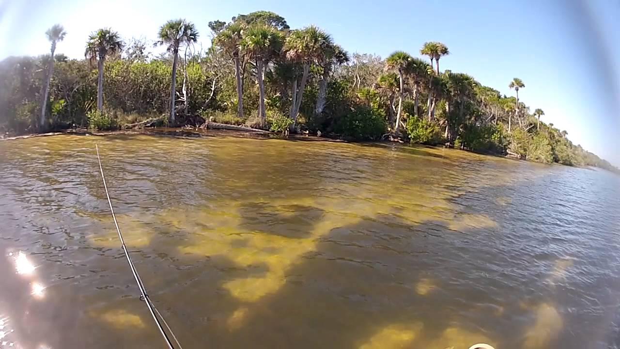 Couple Redfish On Mosquito Lagoon. Sight Fishing Kayak Fishing GoPro - YouTube