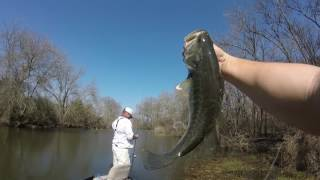 Bass fishing | Lake Ray Hubbard Dallas TX |Catching Creek Channel Bass!