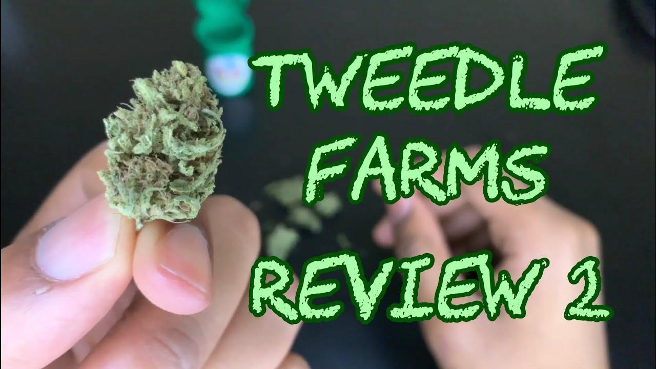 TWEEDLE FARMS CBD REVIEW - YouTube