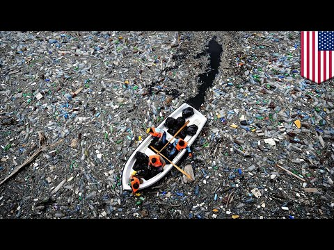 Ocean pollution: 60% of plastic waste in the oceans comes from just five Asian countries - TomoNews