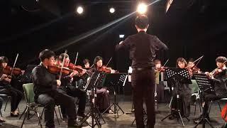 Vivaldi 2 violins Concerto in a minor mov 1
