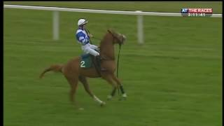 Bucking bronco horse!