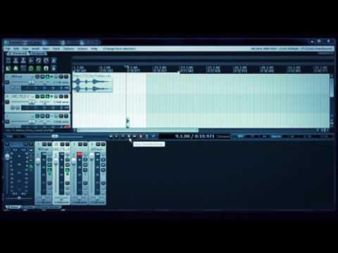 Reapear Daw  - Making Jungle Vocal Effect