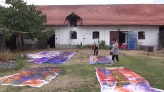 Františka Janečková malířka: Odhalovani strikanych obrazu
