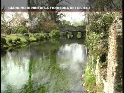 Giardino Di Ninfa La Fioritura Dei Ciliegi Youtube