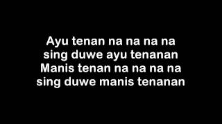 Endank Soekamti ASU TENANAN lyric on screen
