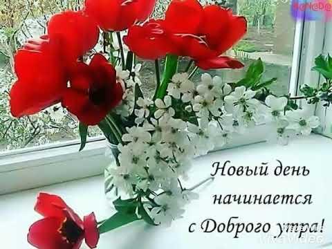 Новый день начинается с доброго утра!