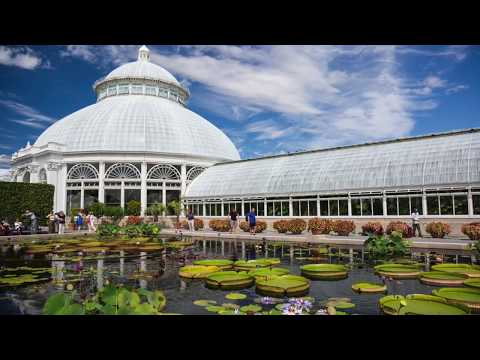 Tourist in Your Own Town #51 - New York Botanical Garden