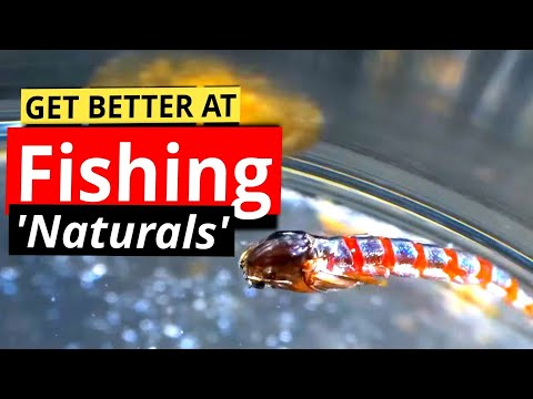 'How To' Fly Fishing With Buzzers For Trout