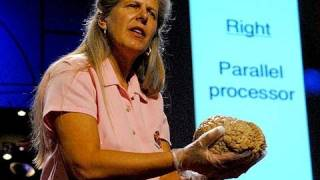 Download My stroke of insight | Jill Bolte Taylor