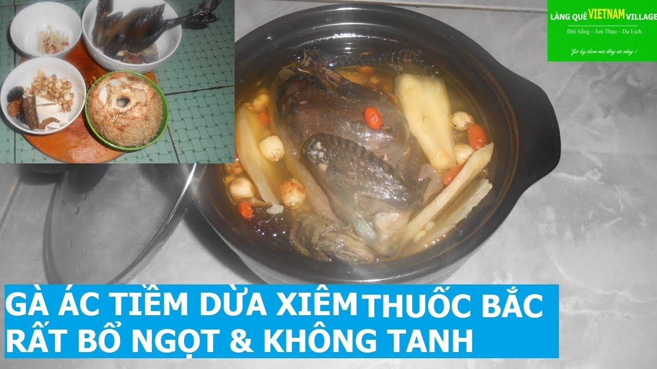 GÀ ÁC TIỀM DỪA XIÊM THUỐC BẮC, RẤT BỔ NGỌT & KHÔNG TANH – Làng quê Việt Nam village