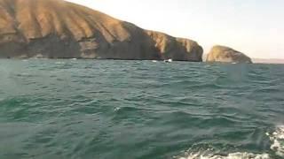 Шторм на чёрном море(Недавно попали в небольшой шторм на прогулочном катере. Чтоб не рисковать людьми, высадили их в безопасном..., 2011-07-24T20:52:09.000Z)