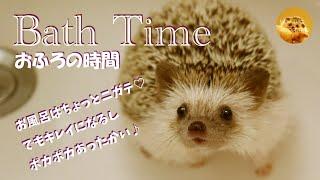【BATH TIME】ノンビリお風呂~♪・・・とはいかず・・・ #stayhome #enjoyhome