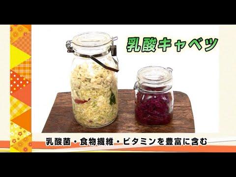 乳酸菌キャベツ ダイエット