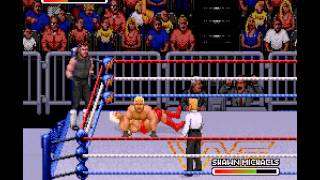 WWF Royal Rumble - Undertaker/Ric Flair Vs HBK/Razor Ramon-Vizzed.com - User video