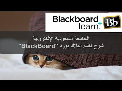 SEU - BlackBoard شرح نظام البلاك بورد في الجامعة السعودية الإلكترونية