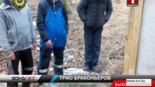 Любителям зверской рыбалки из Быхова грозит тюремный срок. Зона Х