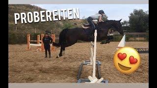 Wird sie MEIN NEUES Pferd 😍🤔 ? - Probereiten FMA | Fay&Caba
