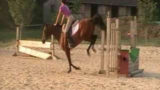 Adoreme- JUMPING