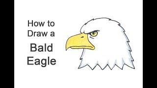 How to Draw a Bald Eagle Head (Cartoon)