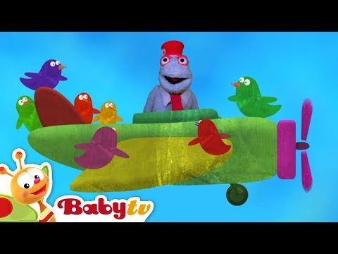 Red, Blue, Green, Cars, Trucks and More! Funny Kids Video | BabyTV