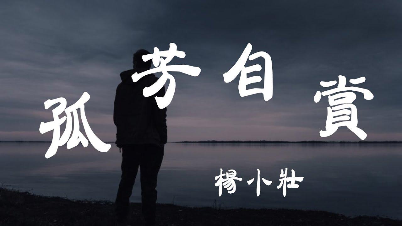 孤芳自賞 - 楊小壯 - 『超高無損音質』【動態歌詞Lyrics】 - YouTube