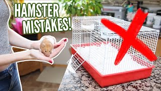 Download Video 6 MISTAKES hamster owners make! MP3 3GP MP4