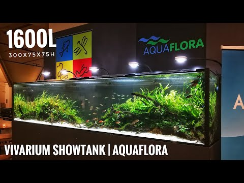 vivarium-showtank-of-300x75x75-cm-|-1600l-(by-aquaflora)