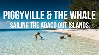 Piggyville & The Whale - Sailing the Abaco Out Islands