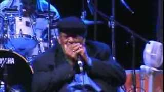 James Cotton live at Dutch Mason Blues Festival