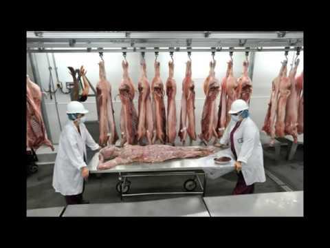 Nhà hàng thịt người - serving human flesh