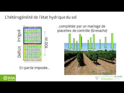 2016 Provence Conference Du Millesime - Thierry Simonneau