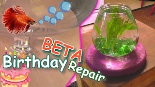 Busted BETA Bowl Repair w/ EXO | A Pet Fish Surpise For The Wild Child!