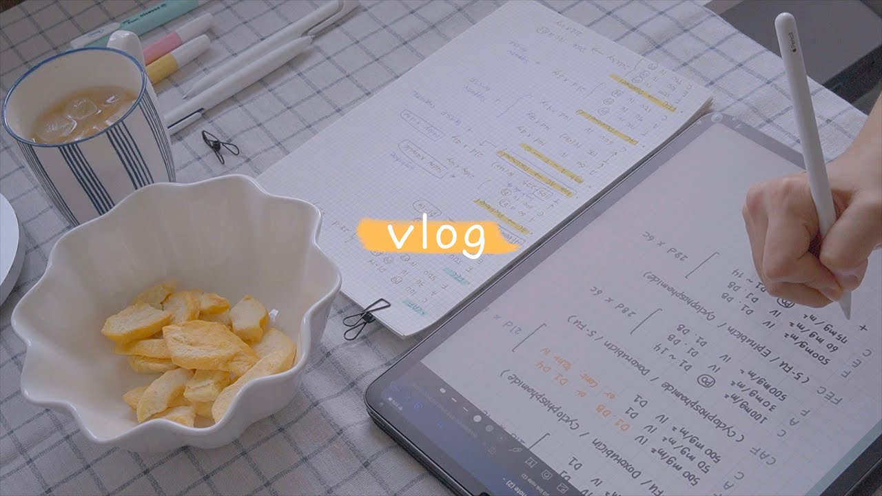 (study vlog) 집에서 공부를 해요   아이패드로 공부하기   study with me