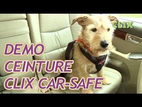 harnais de s curit voiture pour chien clix car safe youtube. Black Bedroom Furniture Sets. Home Design Ideas