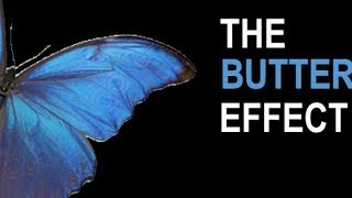 The Butterfly Effect theory with example